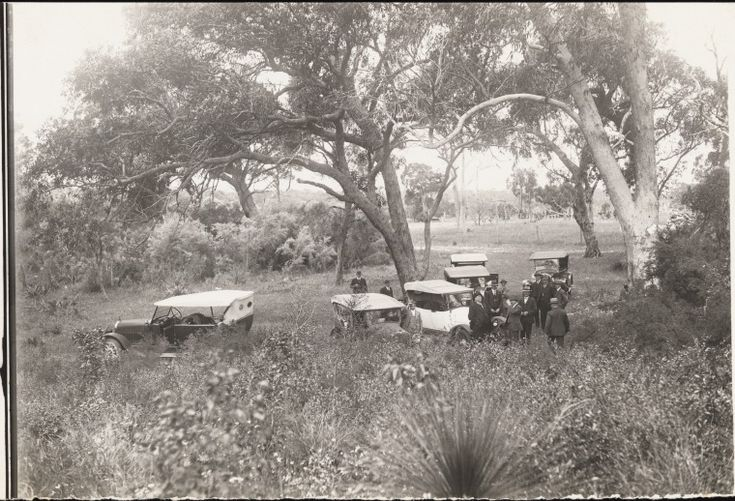 BA1271/97: Cars in bush near Yanchep caves, ca 1910 http://encore.slwa.wa.gov.au/iii/encore/record/C__Rb2096163?lang=eng