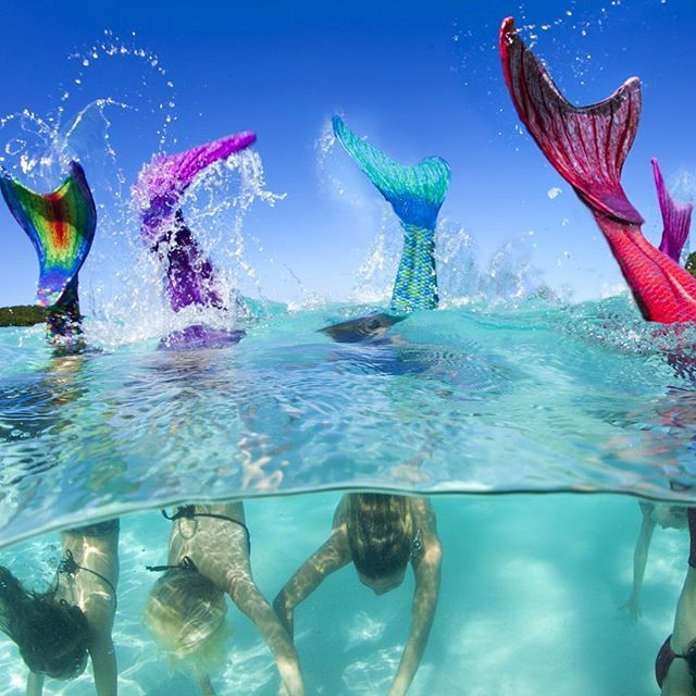 We flip for Fin Fun mermaid tails! The original real swim-able mermaid tail. guaranteed to make you and your child's dreams come true! Perfect for the pool, ocean, or even the tub. Get your tail at FinFunMermaid.com