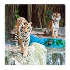 Tigrisek falikép