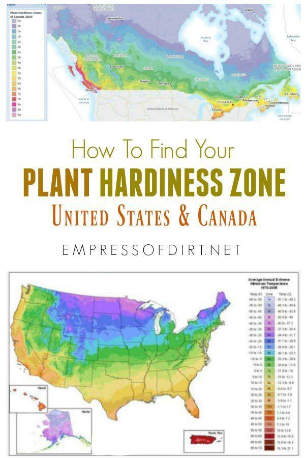 f461c1decef31a548fe39df9097931fd - What Zone Is Ottawa In For Gardening