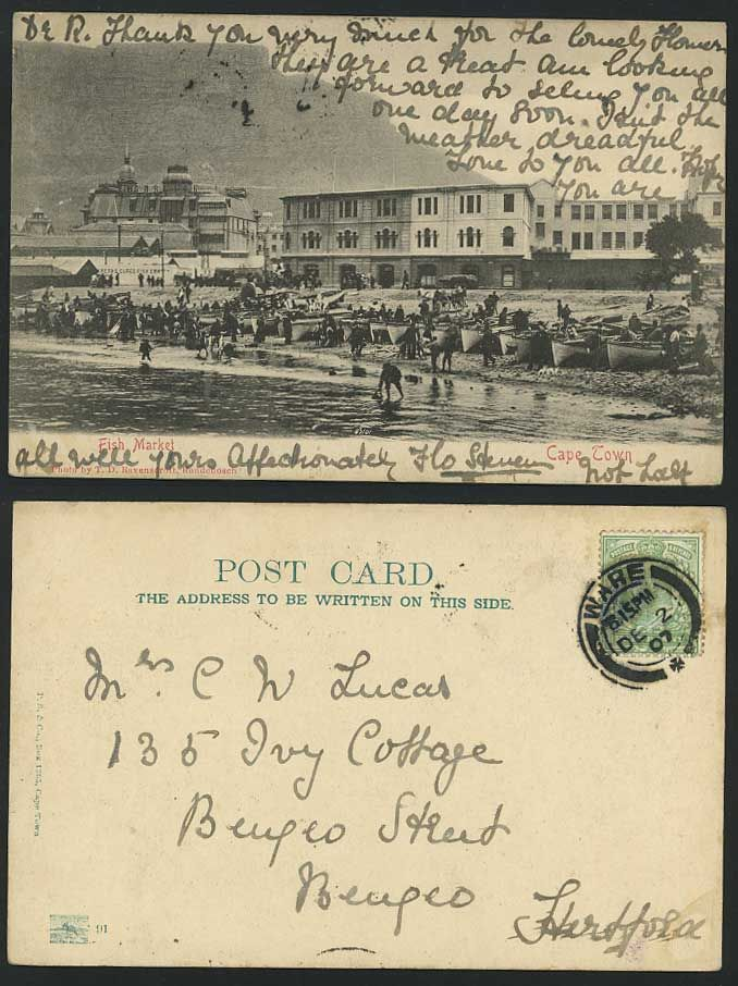 1907 Cape Town fish market