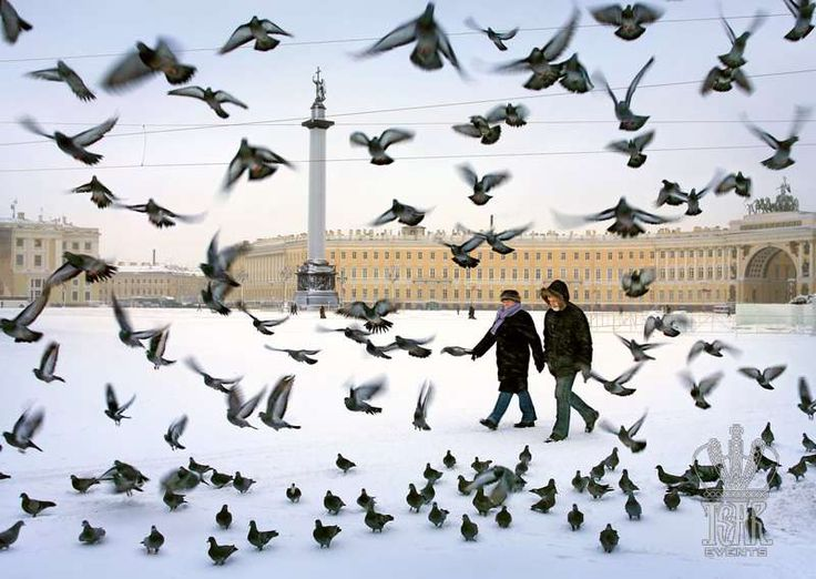 Palace Square in Winter, St. Petersburg