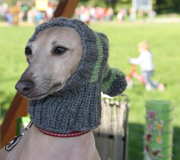 Greyhound Hat / Galgo Hat / Dog Hat / Hand Knit Dog Hat in