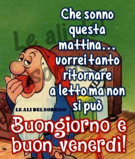 17 best images about buongiorno on pinterest coaching for Immagini divertenti buongiorno venerdi