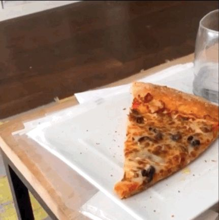 This is my life. gif, dog, dog gif, puppy, puppy gif, puppies, puppies gif, pizza, pizza gif, hungry, hungry gif, life, life gif,