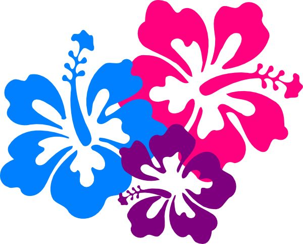 10 best hawaii images on pinterest hawaiian flowers beach and rh pinterest co uk hibiscus flower clipart png