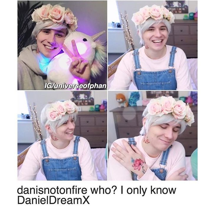 Seriously guys who is Danisnotonfire? I don't know who he is I never heard of him but I've heard of DanielDreamX He's a great guy