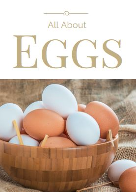 All About Eggs -