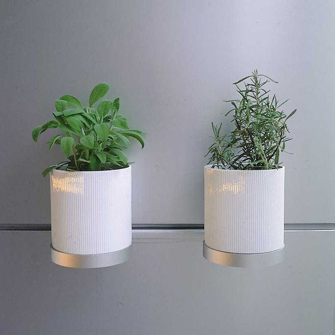 wall-mounted ceramic pots for your kitchen herbs