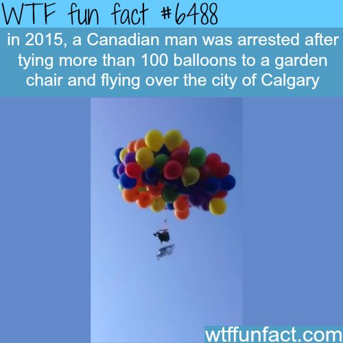 Canadian man arrested after he tied 100 balloons to a chair….- WTF fun facts | Follow @gwylio0148 or visit http://gwyl.io/ for more diy/kids/pets videos