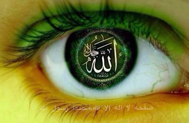 DesertRose///Allah