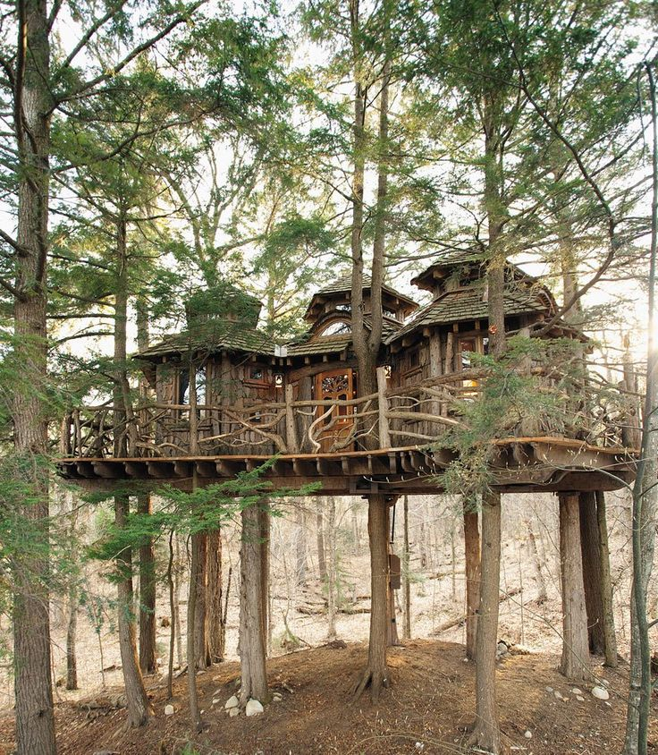 More like a treemansion than a treehouse, this beautiful structure in upstate New York sleeps four adults and has a full bathroom with hot and cold running water. It was carefully engineered to be sound while lofted 25 feet in the air on mature hemlocks—and even survived a hurricane in 2011. Click to the next slide to see the interior.