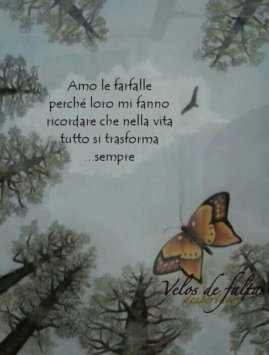 Amo le farfalle....