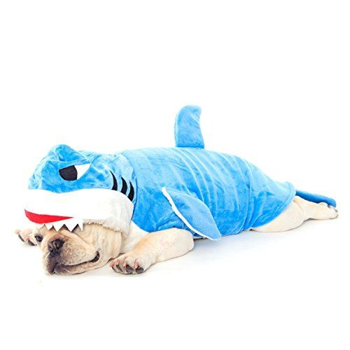French Bulldog in a Shark Costume, Dogloveit Halloween Shark Costumes Soft Dog Clothes For Dog Cat Puppy Pet, Blue, Small Dogloveit http://www.amazon.com/dp/B014P71EZS/ref=cm_sw_r_pi_dp_20Ohwb01RF8GZ: