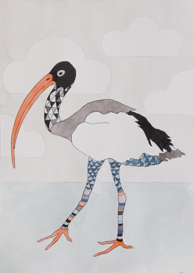 Ibis. Ink and Watercolour illustration by Katrine Mosegaard