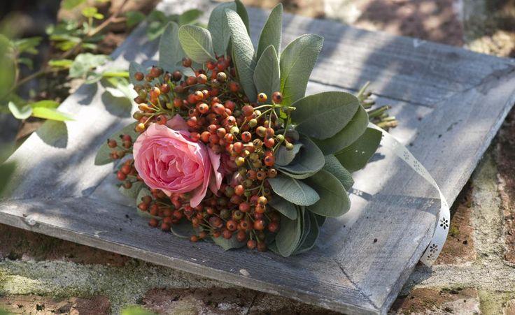 Als Begleiter für eine gefüllte Rose sind Hagebutten wunderbar geeignet. Eine Manschette aus Salbeiblättern verleiht dem Sommerstrauß eine duftende Note. Der Clou: Der Strauß kann so, wie er ist, zum Trocknen aufgehängt werden