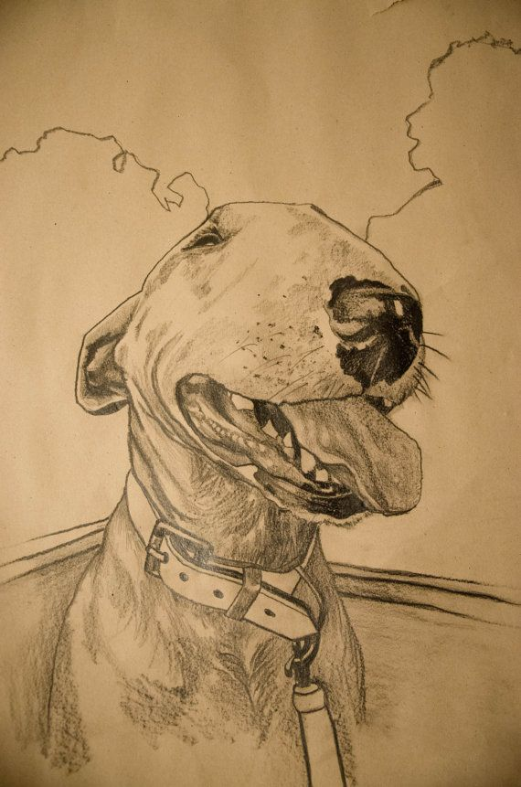 Engelse Bull Terrier van NRPortraits op Etsy