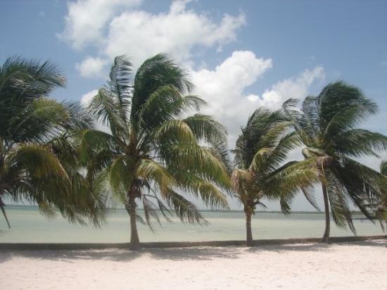 Corozal Town, Belize