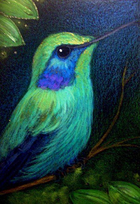Hummingbirds Art Photos Violet Ear Hummingbird B