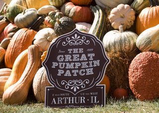 The Great Pumpkin Patch at the Country Living Fair, Columbus, Ohio.