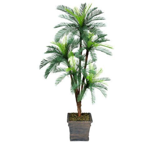 TWO 6' Cycas Palm Artificial Trees with 5 Heads _plastic Fronds, with No Pot -- Click on the image for additional details.