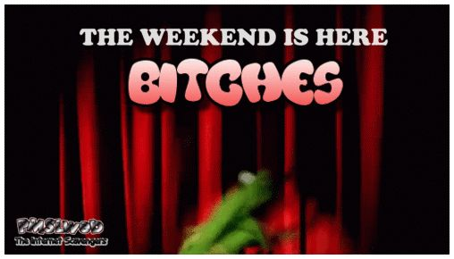 Funny weekend memes collection  The guffaws are strong  PMSLweb