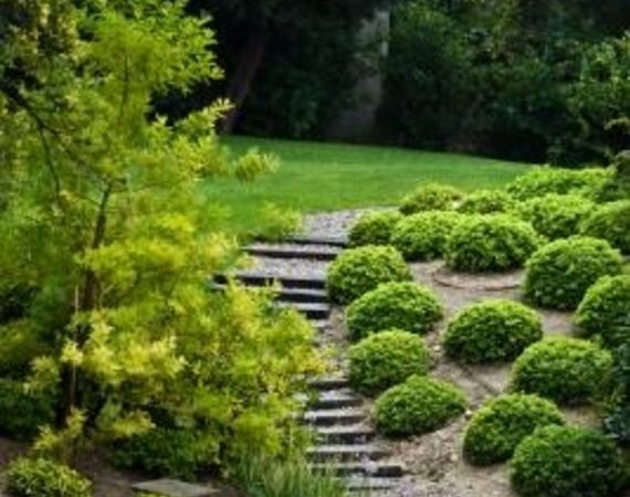 How to Landscape a Back Yard With an Incline | eHow.com: Gardens Ideas, Sloped Backyard, Landscaping Ideas, Backyard Landscape, Landscape Design, Front Yard, Landscapes, Landscape Ideas, Retaining Wall