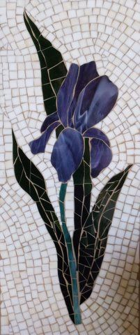 Irises_Karen_Abbott,Medium.JPG (201×480)