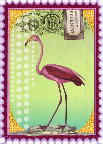 .Pink Flamingos