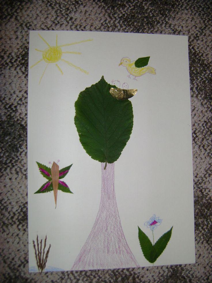 Kép levelekből
