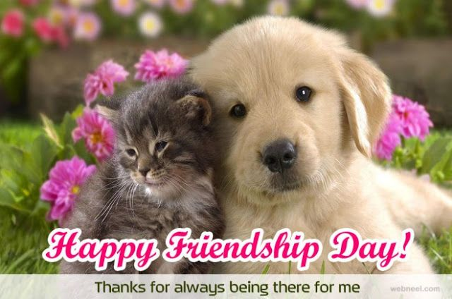 Friendship Day 2017 SMS Messages in English