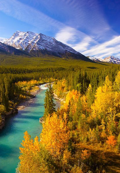 The view from David Thompson Highway, Alberta, Canada.