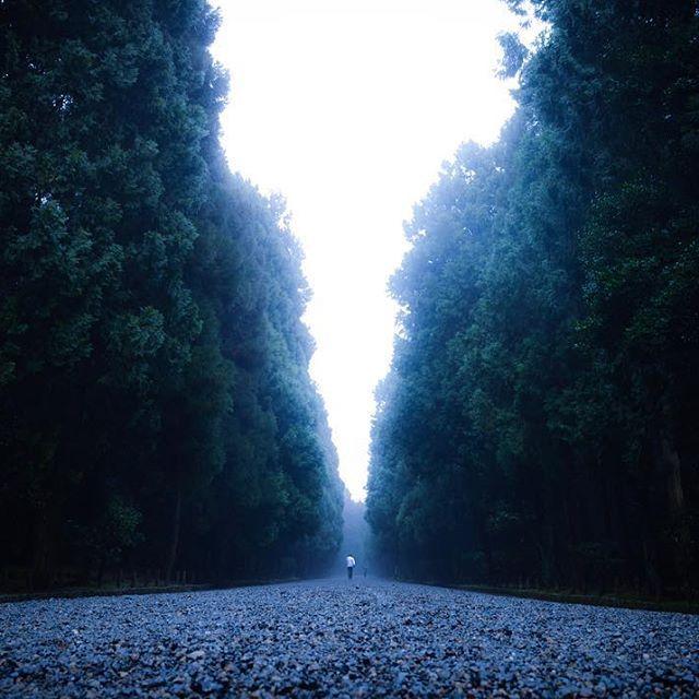 【d.m_0701】さんのInstagramをピンしています。 《霧がかる明治天皇陵。 Foggy forest.  #一眼レフ #一眼 #一眼レフカメラ #ニコン #Nikon #d5100  #ファインダー越しの私の世界  #写真撮ってる人と繋がりたい  #写真好きな人と繋がりたい  #ig_asia #ig_japan #ig_today #team_jp_西 #team_jp_ #nikonphotography  #nikonphotographers #japan_daytime_view #landscape #森 #霧 #fog #fogstagram #tv_foggy #明治天皇陵 #明治天皇伏見桃山陵》