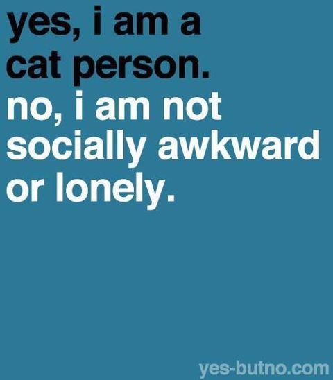 oui, je suis un(e) amoureu(se)x des chats... non, je n'ai pas de problèmes relationnels et je ne suis pas solitaire... (d'ailleurs, comment se sentir seul(e) avec des chats à la maison ?!?)