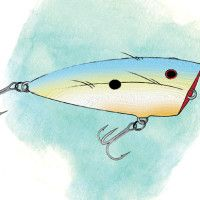 A Quick Guide to Topwater Lures