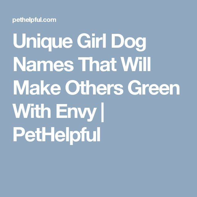 Unique Girl Dog Names That Will Make Others Green With Envy | PetHelpful