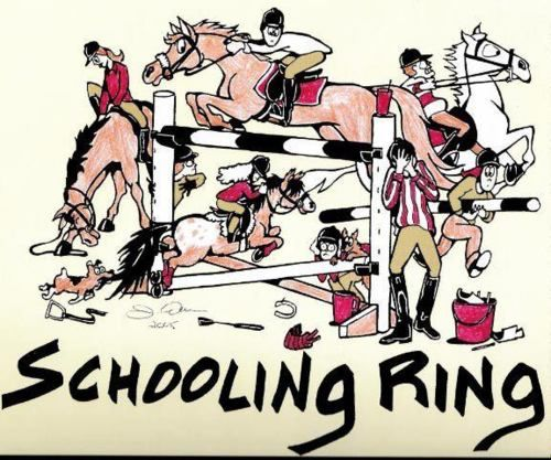 Horse Accidents In Schooling Ring