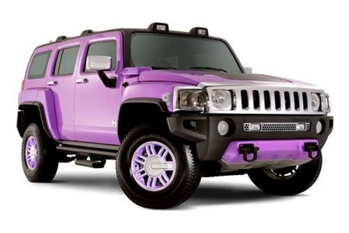 Purple Hummer!  My boys want a hummer, I love the color.  It is a win win everyone is happy.  Except Daddy who would have to pay for it and the gas.