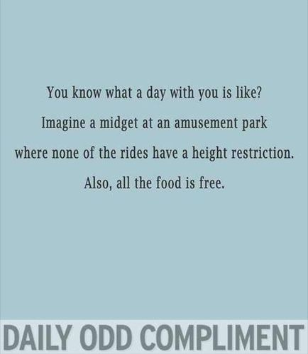 The Daily Odd Compliment - CafeMom Mobile