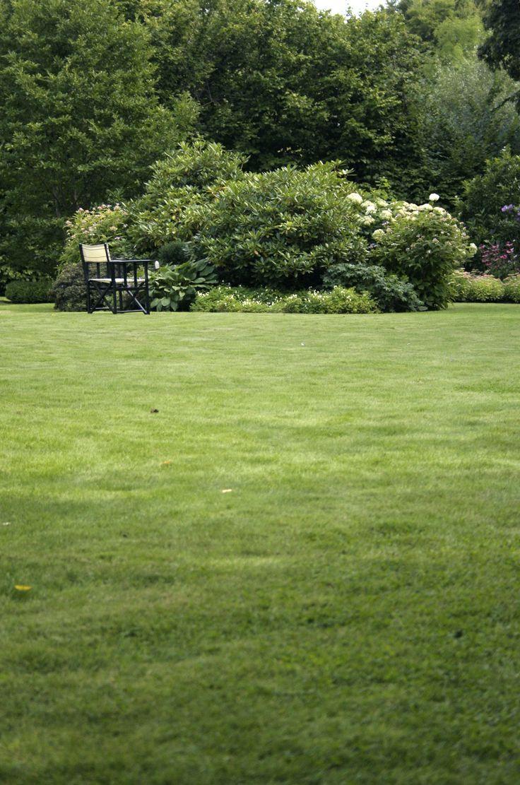 25+ unika Trädgård gräsmatta-idéer på Pinterest | Gräsmatta ...