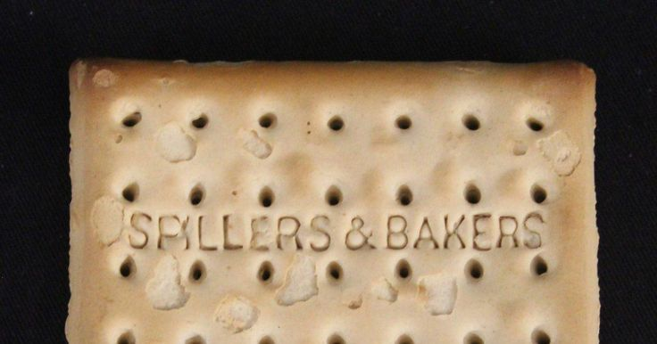 The unsinkable biscuit has sold for $23,000.