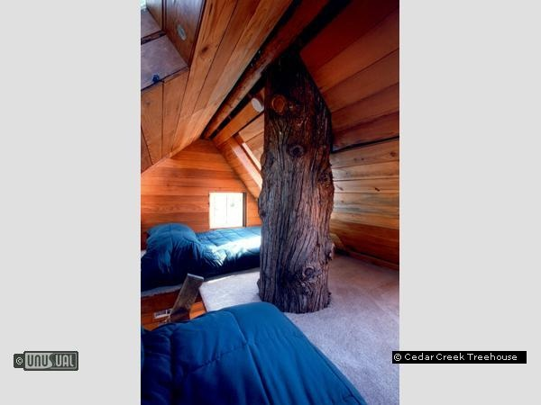 Cedar Creek Treehouse in Ashford United States of America : Unusual & Unique Hotels of the World