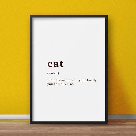Funny cat definition Cat lovers wall art funny cat wall art