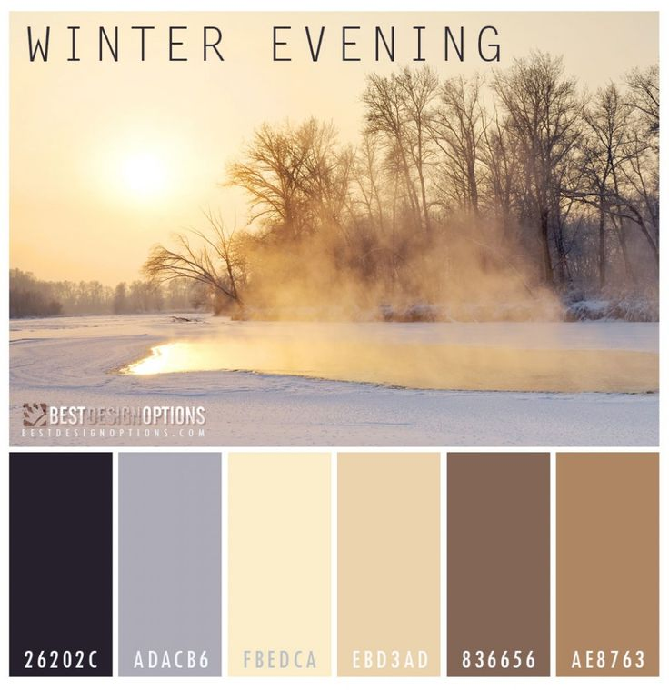 2014 Color Palettes for Winter Love this color palette, Winter Evening.