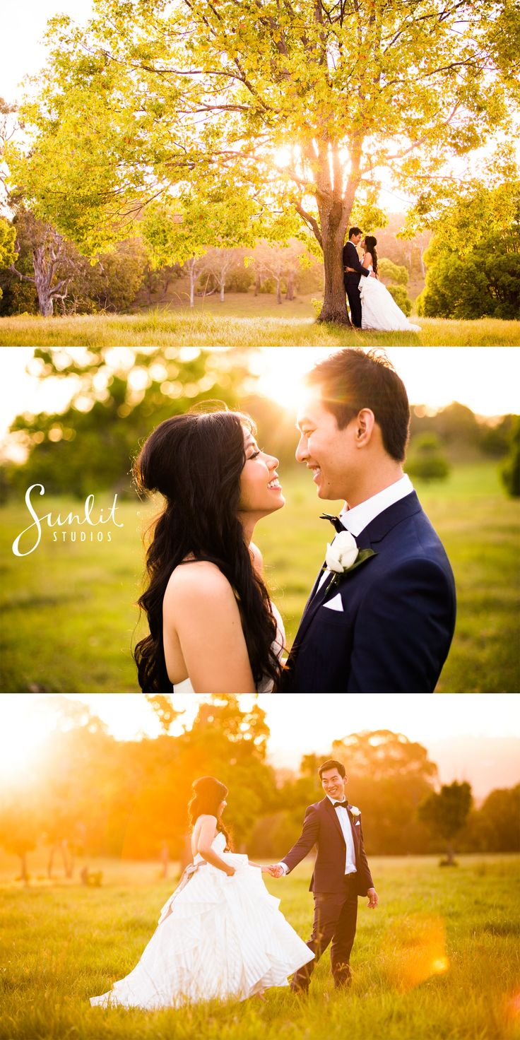 Our favourite secret paddock on the Gold Coast.. perfect for stunning wedding photos! Photography by Sunlit Studios