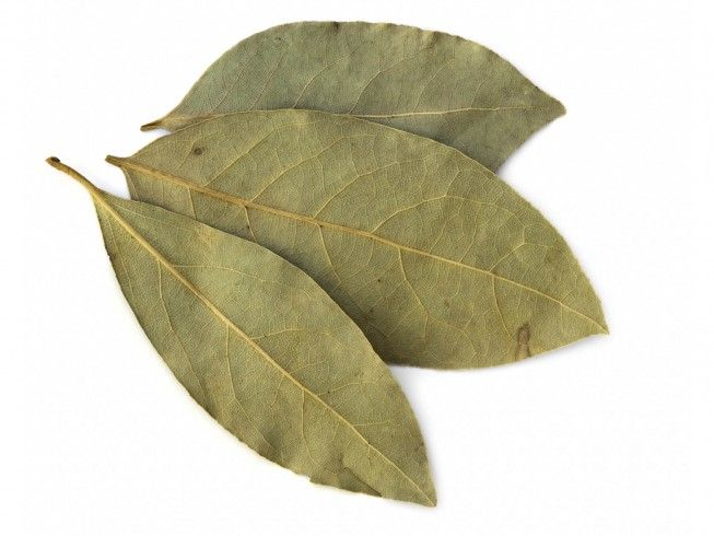 A recipe for Bayleaf Ant Remedy made with salt, bay. Recipe Directions: Take a large stock pot or canning kettle, add salt and bay leaves. Bring to