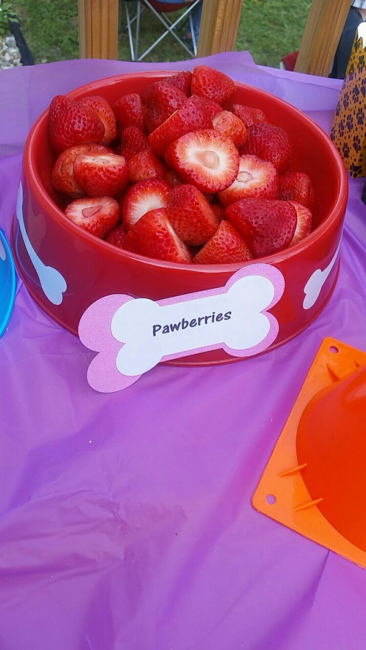 Girls paw patrol party