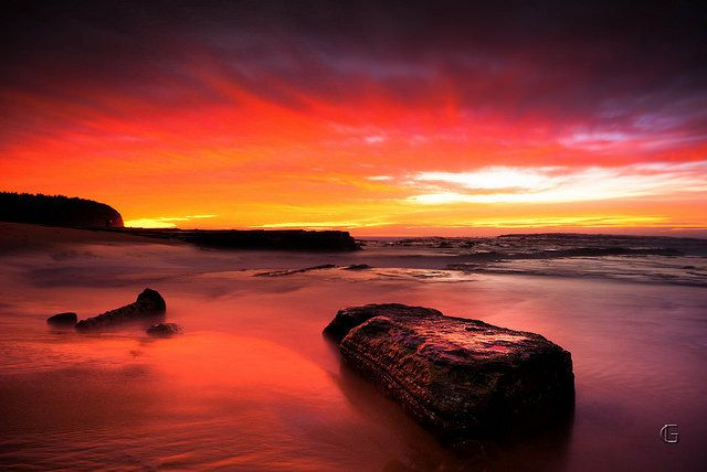 Title: Red Tide Location: Turimetta Beach