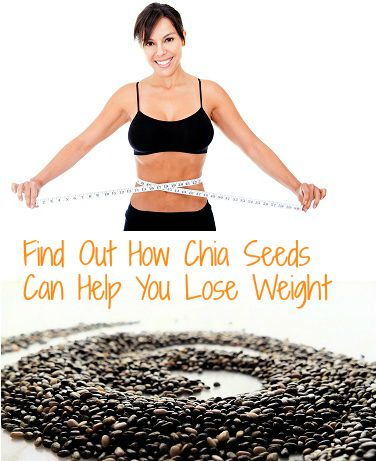Feel indian food timetable for weight loss