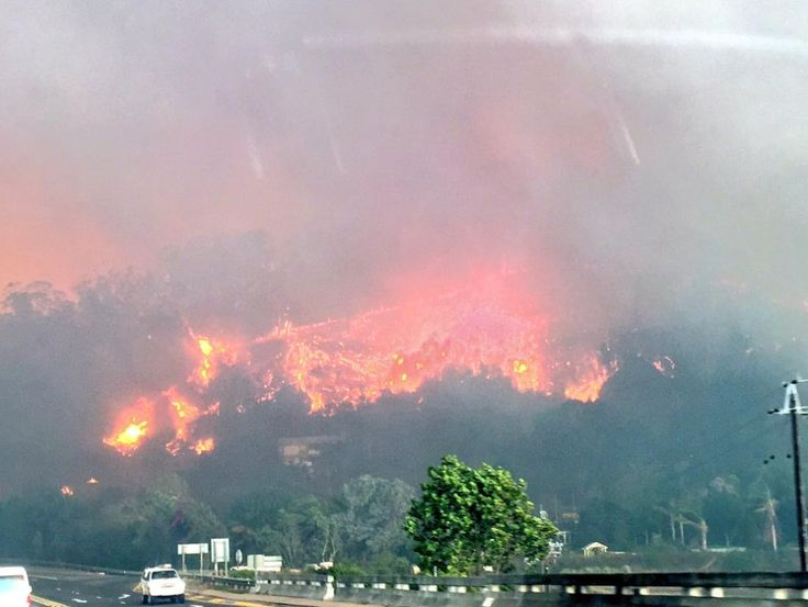 Eight people have died in storms lashing the Western Cape and in fires raging along large parts of the Garden Route.The Western Cape Disaster Management Centre said four people died in a fire caused by lightning in Kraaifontein in Cape Town.In Lavender Hill, a 60-year-old man was killed when a shack